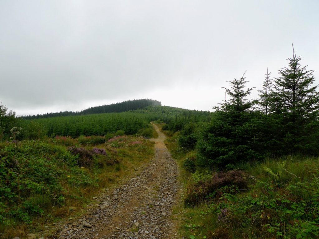 Afan Forest MTB South Wales