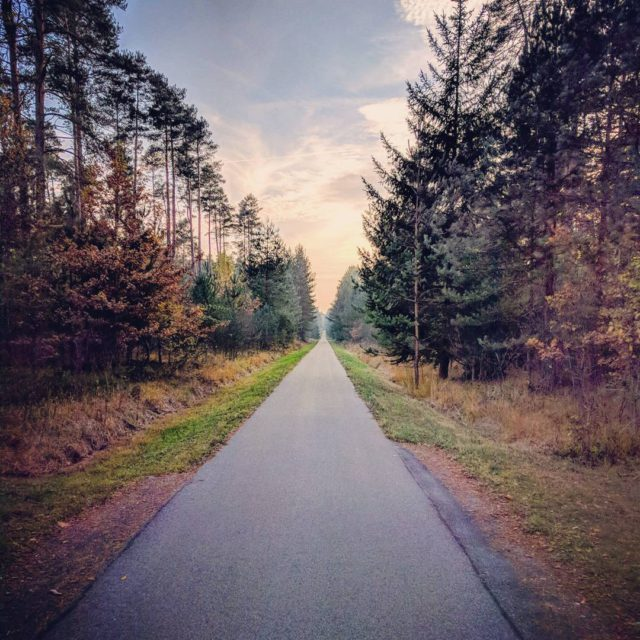 Evening vibes on the Gredl Radweg between Hilpoltstein and Thalmssinghellip